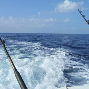Full Day Large RIB Fishing Trips