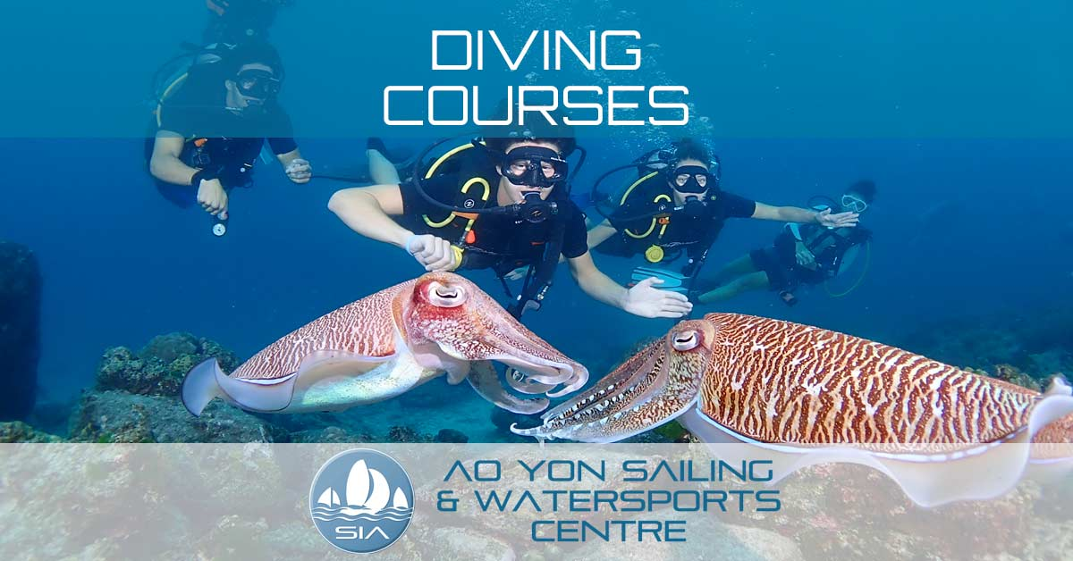 Dive Courses